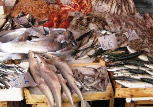 Mercato del pesce, ecco il bando. Calciolari: